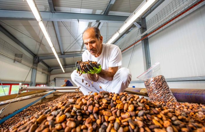 industrie, fotografie, fotograf, lebensmittel, fuchs und hoffmann, kakaoproduktion